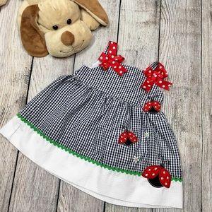 5/$25 Rare Editions | Gingham Ladybug Dress